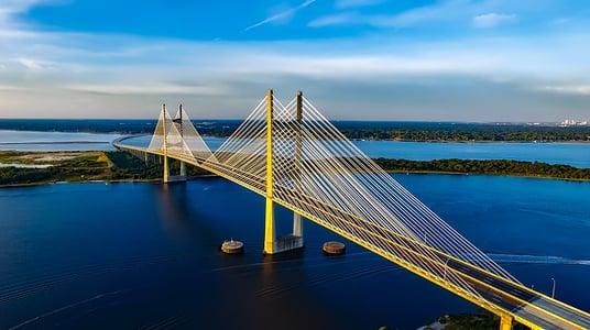 dames-point-bridge-1768738_640